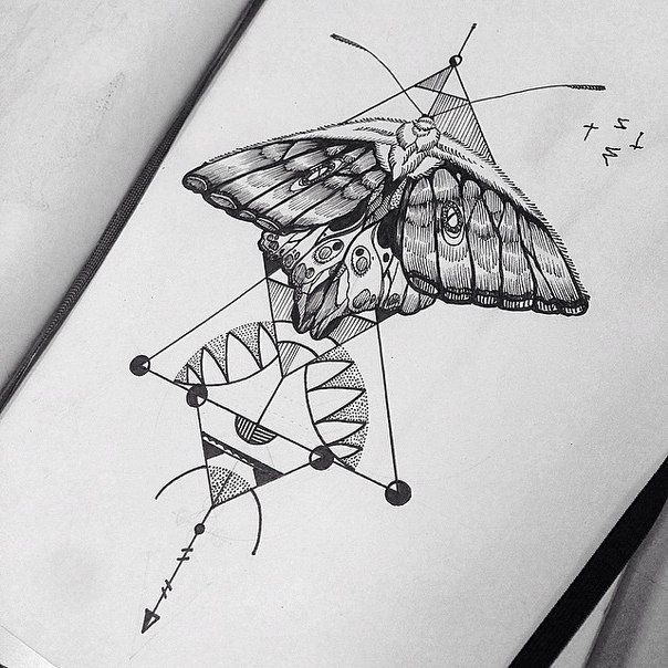 Black Moth for Girl's Chest Tattoo Design