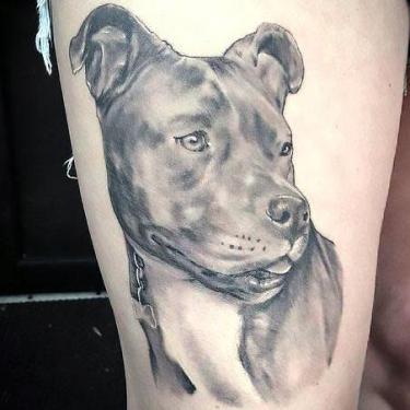 Awesome Pitbull Tattoo Tattoo