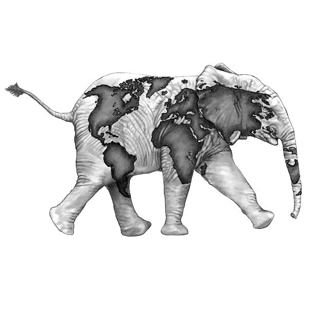 Elephant Representing Travelling Tattoo Design