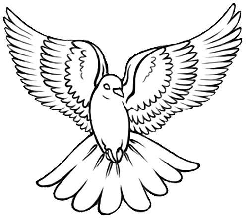 White Dove Tattoo Design