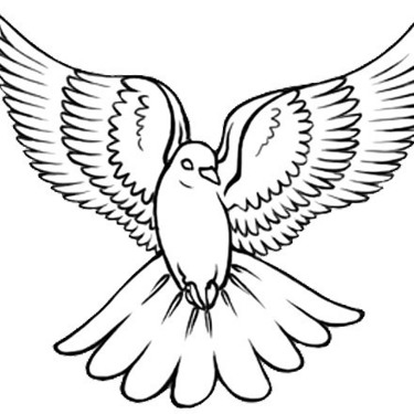 White Dove Tattoo