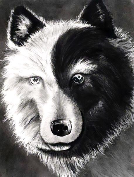 Yin Yang Wolf Tattoo Design