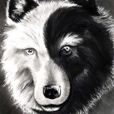 Yin Yang Wolf Tattoo