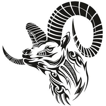Beautiful Goat Tattoo