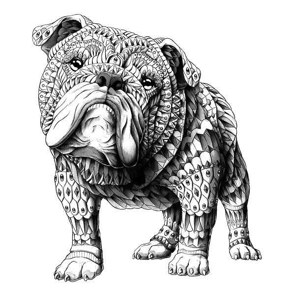 Ornate Bulldog Tattoo Design