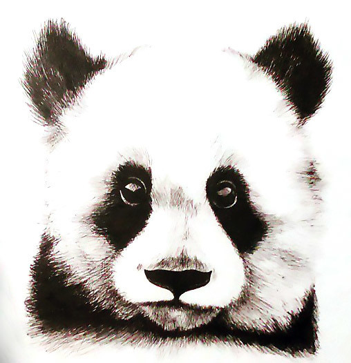 Panda Baby Tattoo Design