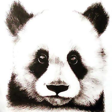 Panda Baby Tattoo