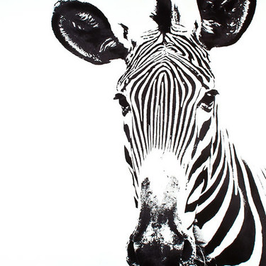 Zebra Head Tattoo