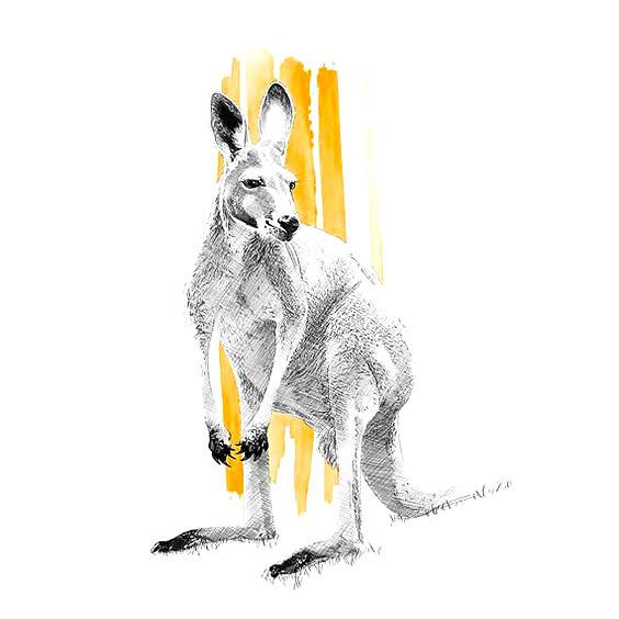 Awesome Kangaroo Tattoo Design