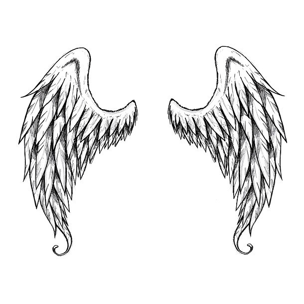 Beautiful Wing Tattoo Design