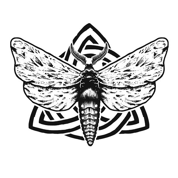 Great Moth Tattoo Drawing Tattoo Design