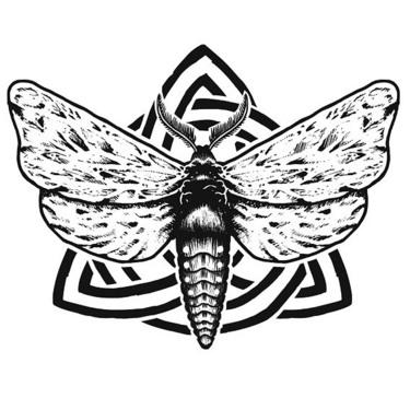 Great Moth Tattoo Drawing Tattoo