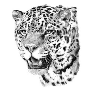 Realistic Jaguar Head Tattoo