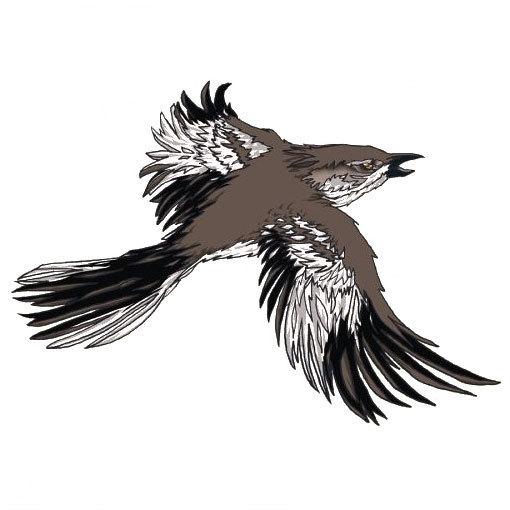 Mockingbird Tattoo for Men Tattoo Design