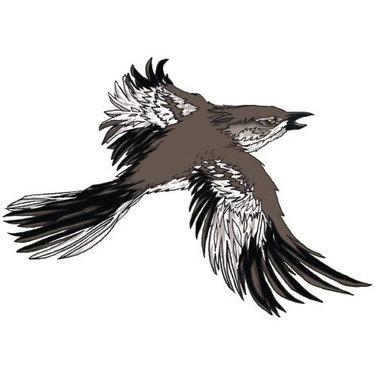 Mockingbird Tattoo for Men Tattoo